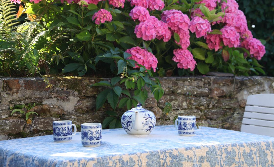 terrasse-jardin-hortensias
